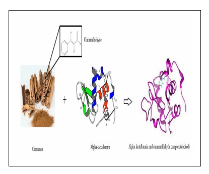 Study of the Interaction of Cinnamaldehyde with Alpha-lactalbumin: Spectroscopic and Molecular Docking Investigation